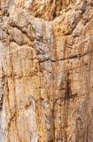 固体岩石墙纸 库存图片