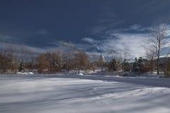 国会大厦冬天 免版税库存照片