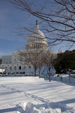 国会大厦冬天 图库摄影