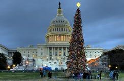 国会大厦圣诞树我们 库存照片