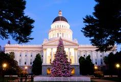 国会大厦圣诞树 免版税库存照片