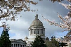 国会大厦春天状态华盛顿 免版税库存照片
