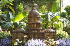 国会大厦缩样在植物园里 免版税库存照片