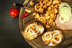 国内咸油煎的猪肉护痉套堆  肥腻速食 在厨房板的猪肉护痉套 免版税库存图片