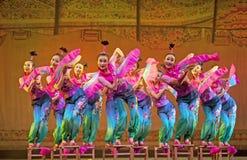 国家中国的舞蹈演员 库存照片