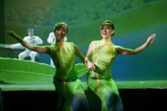 国家中国的舞蹈演员 免版税图库摄影