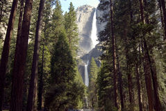 国家公园优胜美地 库存照片