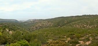 国家公园和生物圈储备, Carmel。 图库摄影