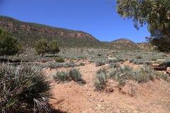 国家公园图卜卡勒峰在摩洛哥 免版税库存图片