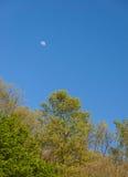国家公园弗鲁什卡山,塞尔维亚的风景 免版税库存照片