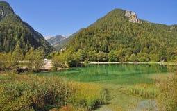 国家公园斯洛文尼亚triglav 免版税库存图片