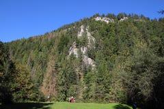 国家公园斯洛伐克天堂,斯洛伐克 免版税库存照片