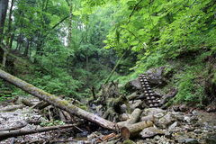 国家公园斯洛伐克天堂,斯洛伐克 免版税图库摄影