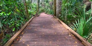 国家公园木板走道在佛罗里达 图库摄影