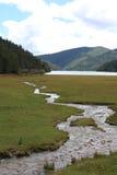 国家公园河 库存照片