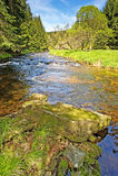 国家公园河sumava vltava 库存图片