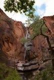 国家公园美国瀑布zion 免版税图库摄影