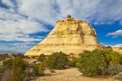 国家公园美国犹他zion 免版税库存图片