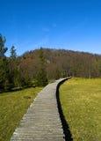 国家公园路径访客 免版税库存照片