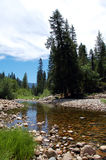 国家公园风景水优胜美地 免版税图库摄影