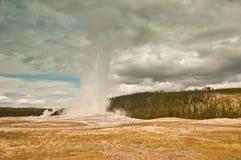 国家公园黄石 库存照片