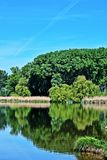 国家公园Lobau - Donauauen 库存照片