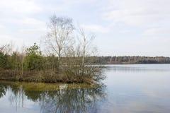 国家公园Maasduinen,荷兰 免版税库存图片