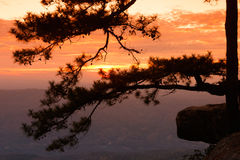 国家公园phukradung点日出视图 免版税库存图片