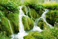国家公园plitvice小的瀑布 库存照片