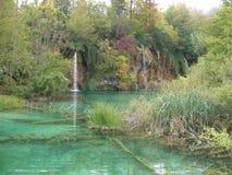 国家公园Plitvice湖,克罗地亚 免版税图库摄影