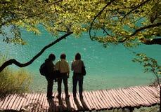 国家公园plitvice 免版税图库摄影