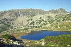 国家公园retezat 图库摄影
