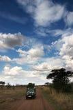 国家公园serengeti视图 库存照片