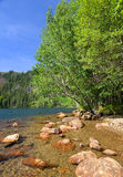 国家公园Sumava,捷克共和国 库存图片