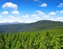 国家公园Sumava 免版税库存照片