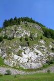 国家公园Sutjeska 图库摄影