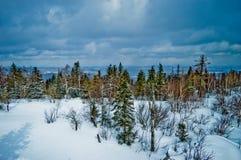 国家公园Taganay,车里雅宾斯克地区,俄罗斯 图库摄影