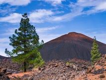 国家公园teide tenerife 免版税库存图片