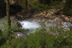 国家公园Tscheppaschlucht,克恩顿州,奥地利 库存照片