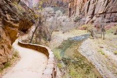 国家公园zion 免版税图库摄影
