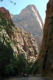 国家公园zion 库存照片
