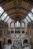 国家历史博物馆,是一个家庭的最喜爱的博物馆在伦敦 库存照片