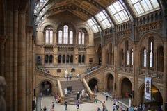 国家历史博物馆,是一个家庭的最喜爱的博物馆在伦敦 免版税库存图片