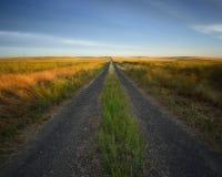 国家后面路 免版税库存图片