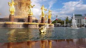 国家喷泉友谊在Vdnkh公园  股票录像