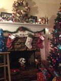 国家圣诞节 库存照片