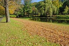 国家在秋天下午的庄园池塘 免版税库存照片