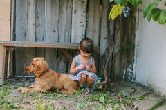 国家女孩坐与她的狗的一条长凳在藤下 木 免版税库存照片