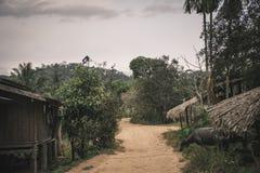 国家有木小屋和水牛的,静物画土路看法  免版税库存照片