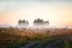 国家有雾的风景 免版税库存图片